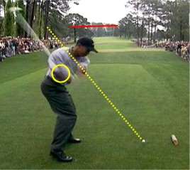 Tiger's chest rotates before his shoulders start to release though the ball